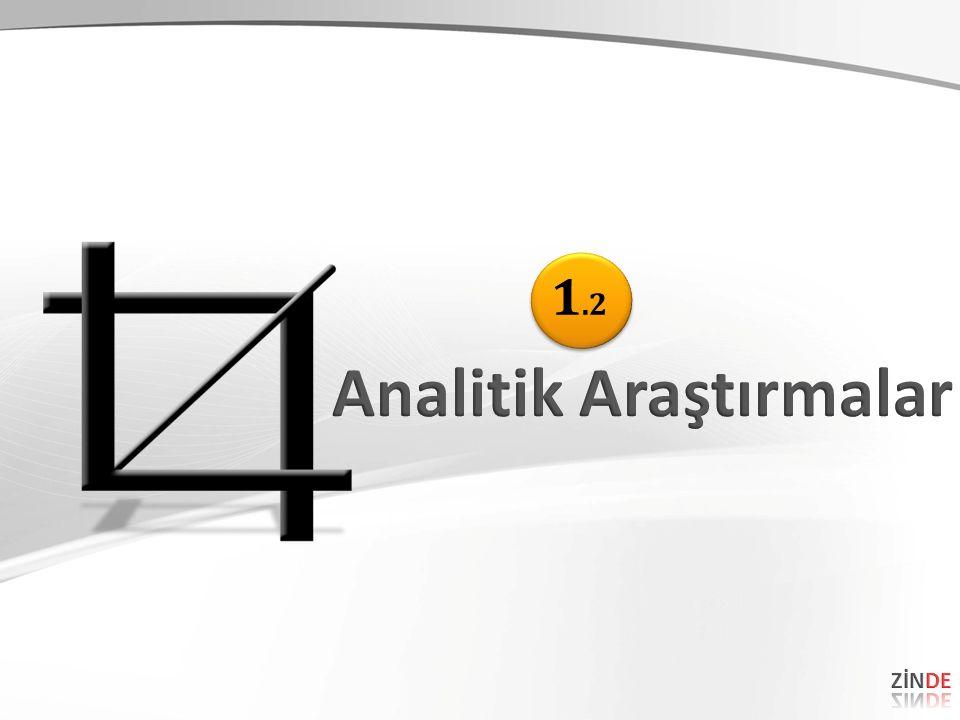 Analitik Araştırmalar