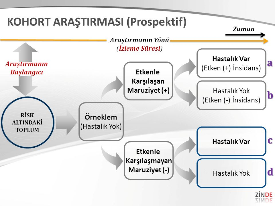 KOHORT ARAŞTIRMASI (Prospektif)