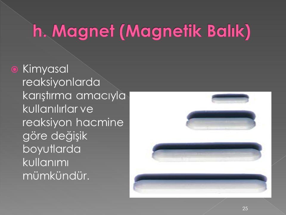 h. Magnet (Magnetik Balık)