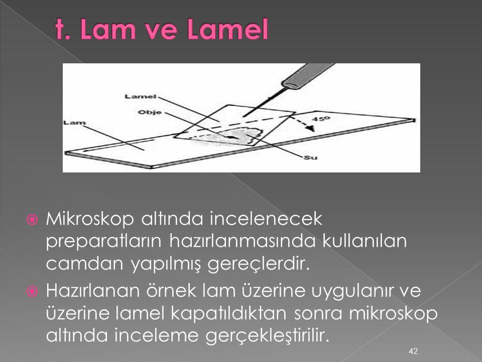 t. Lam ve Lamel Mikroskop altında incelenecek preparatların hazırlanmasında kullanılan camdan yapılmış gereçlerdir.