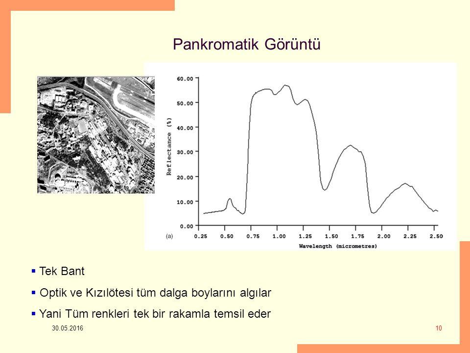 Pankromatik Görüntü Tek Bant