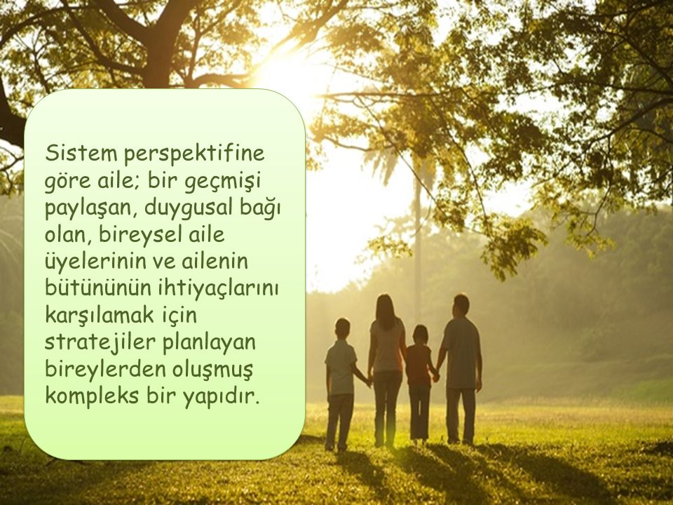 Sistem perspektifine göre aile; bir geçmişi paylaşan, duygusal bağı olan, bireysel aile üyelerinin ve ailenin bütününün ihtiyaçlarını karşılamak için stratejiler planlayan bireylerden oluşmuş kompleks bir yapıdır.