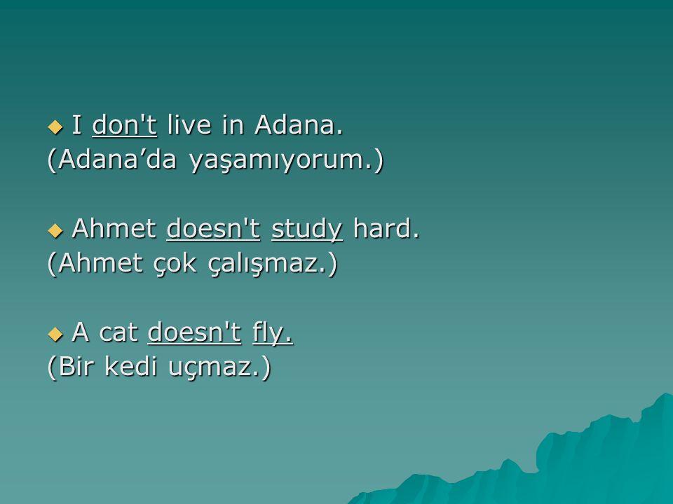 I don t live in Adana. (Adana'da yaşamıyorum.) Ahmet doesn t study hard. (Ahmet çok çalışmaz.) A cat doesn t fly.