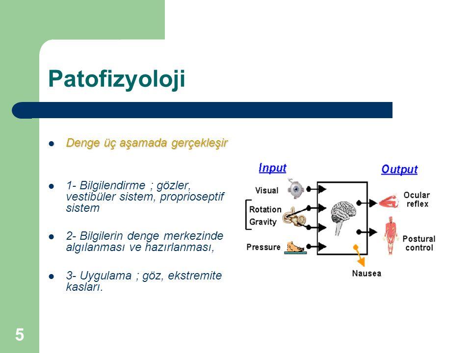 Patofizyoloji Denge üç aşamada gerçekleşir
