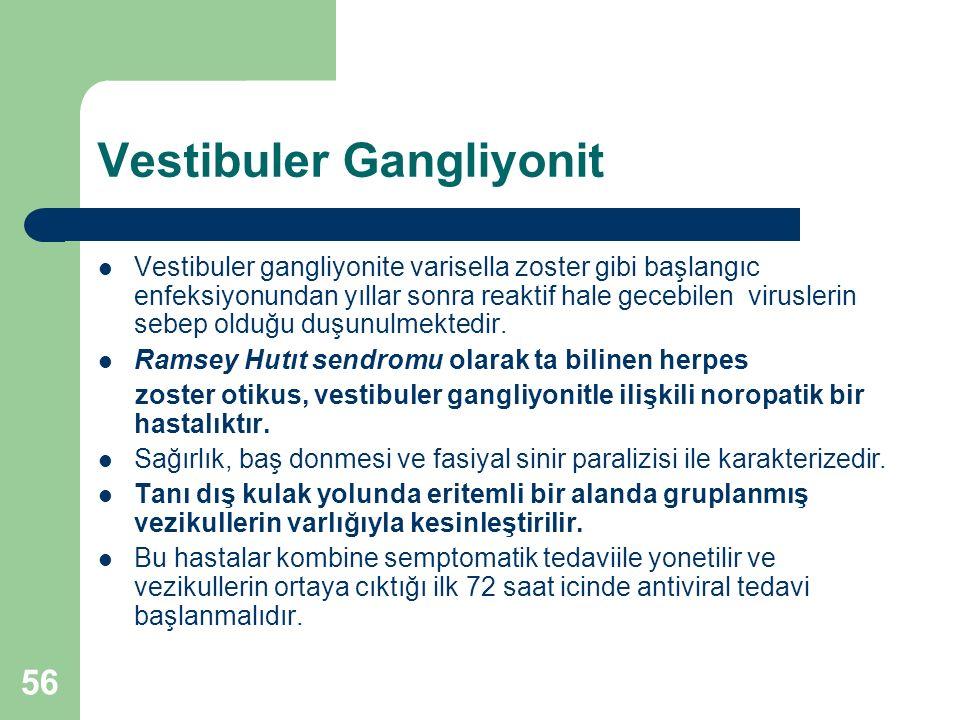 Vestibuler Gangliyonit