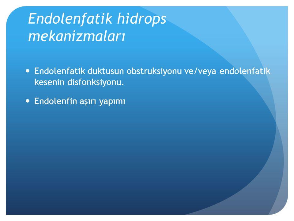 Endolenfatik hidrops mekanizmaları