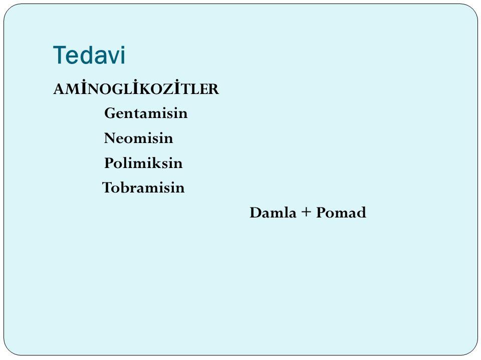Tedavi AMİNOGLİKOZİTLER Gentamisin Neomisin Polimiksin Tobramisin Damla + Pomad