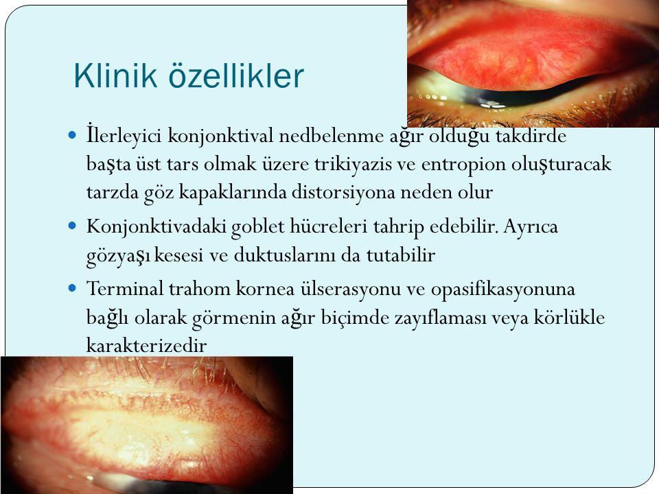 Klinik özellikler