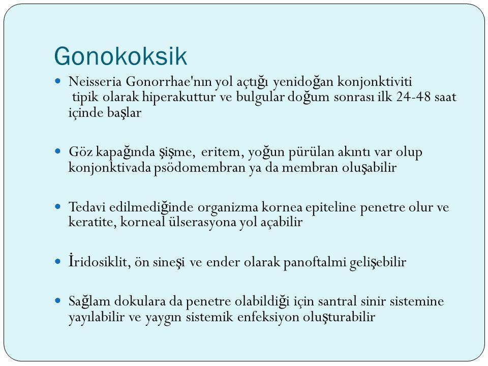Gonokoksik
