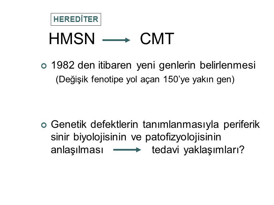 HMSN CMT 1982 den itibaren yeni genlerin belirlenmesi