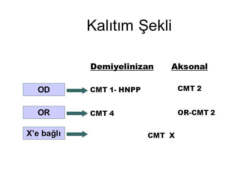 Kalıtım Şekli Demiyelinizan Aksonal OD OR X'e bağlı CMT 2 CMT 1- HNPP