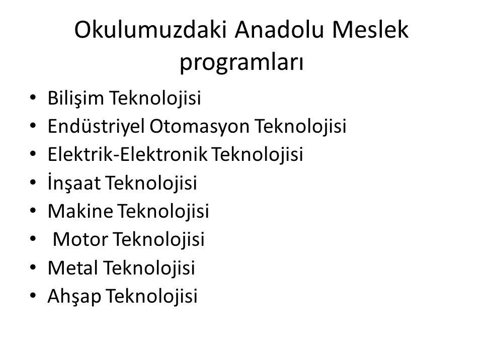 Okulumuzdaki Anadolu Meslek programları