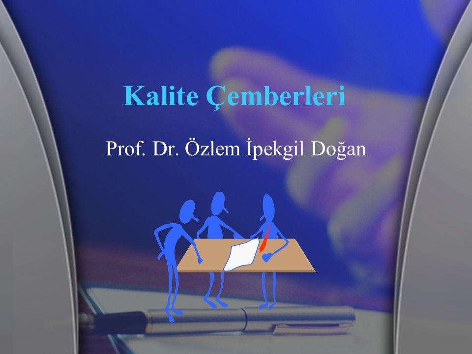 Prof. Dr. Özlem İpekgil Doğan