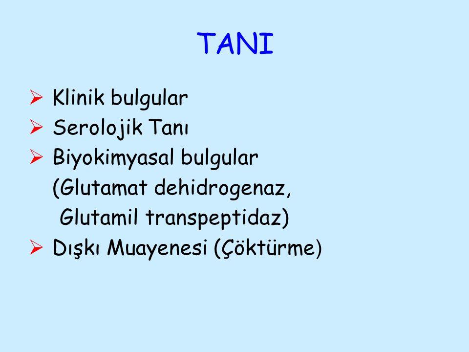 TANI Klinik bulgular Serolojik Tanı Biyokimyasal bulgular