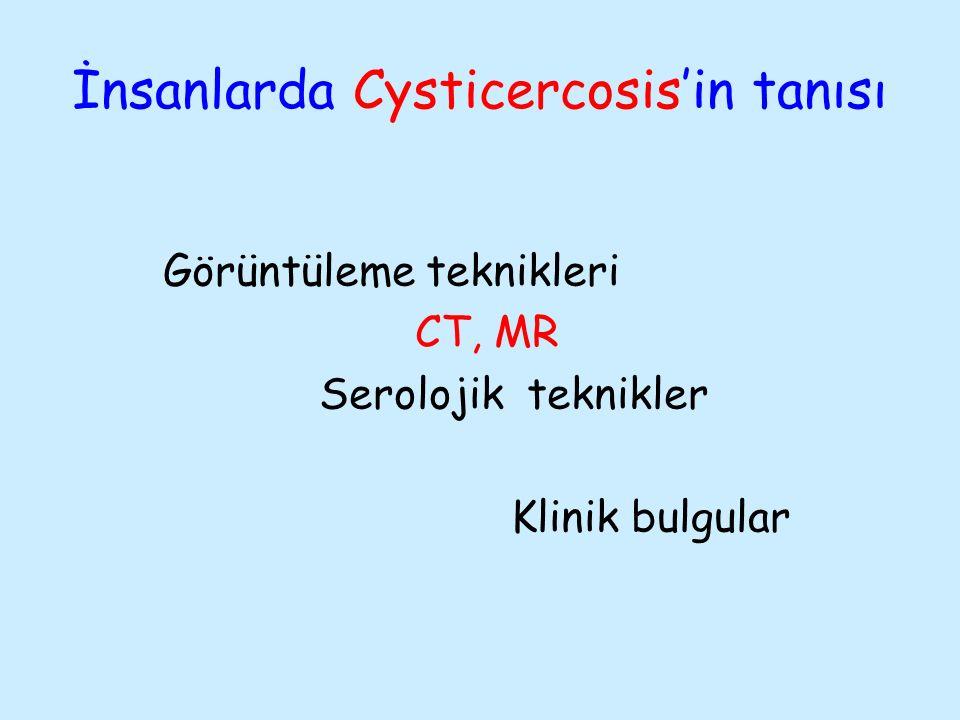 İnsanlarda Cysticercosis'in tanısı