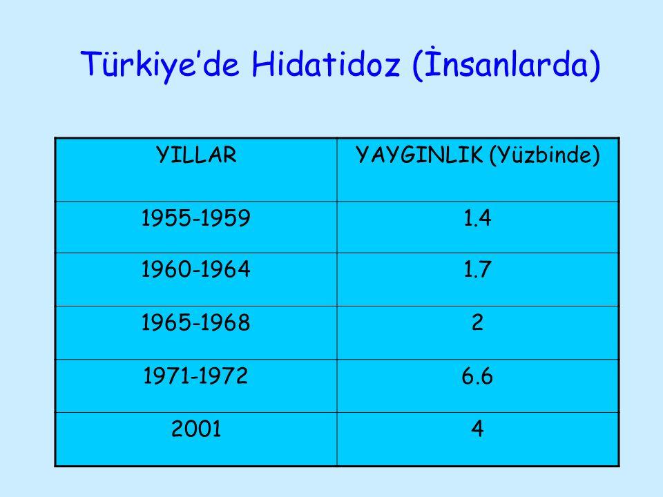 Türkiye'de Hidatidoz (İnsanlarda)
