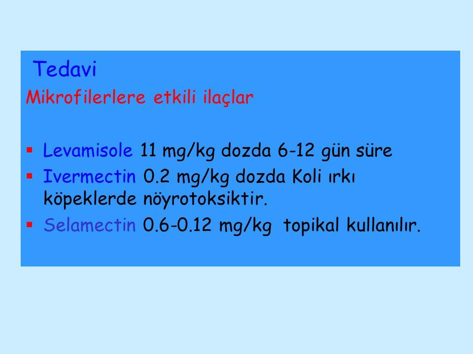 Tedavi Mikrofilerlere etkili ilaçlar