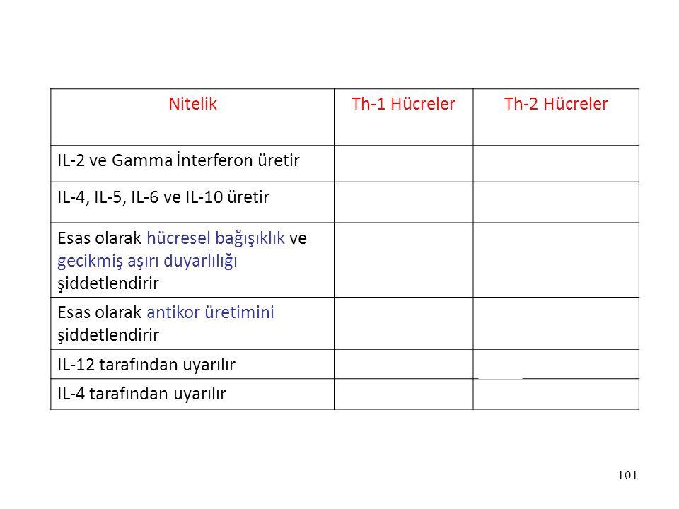 Nitelik Th-1 Hücreler. Th-2 Hücreler. IL-2 ve Gamma İnterferon üretir. Evet. Hayır. IL-4, IL-5, IL-6 ve IL-10 üretir.