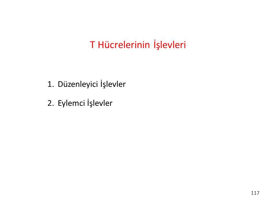 T Hücrelerinin İşlevleri
