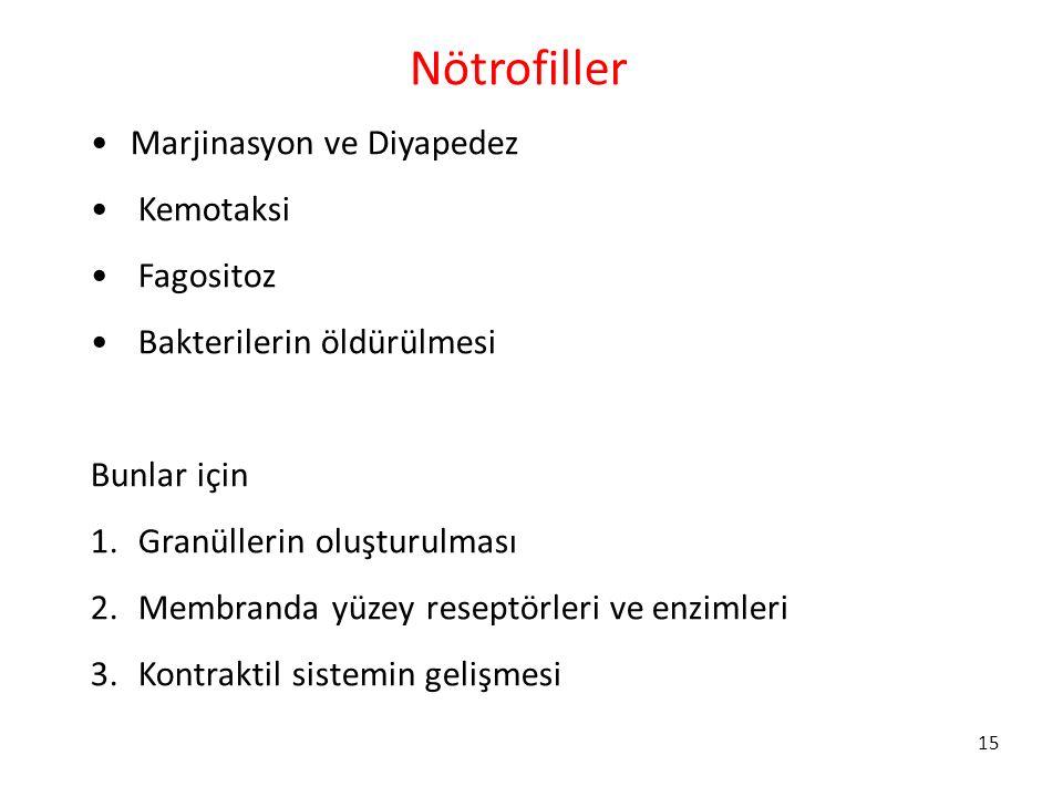 Nötrofiller Marjinasyon ve Diyapedez Kemotaksi Fagositoz