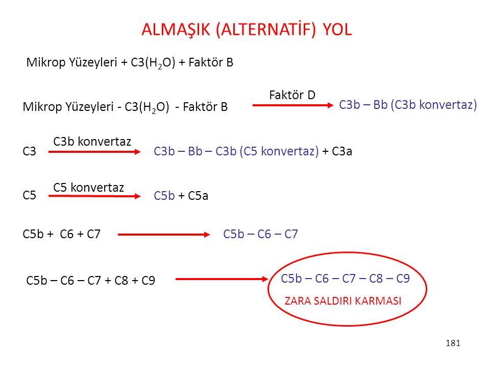 ALMAŞIK (ALTERNATİF) YOL