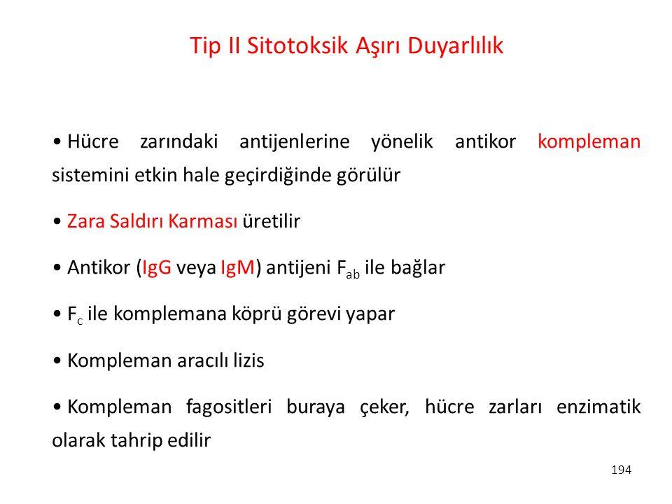 Tip II Sitotoksik Aşırı Duyarlılık