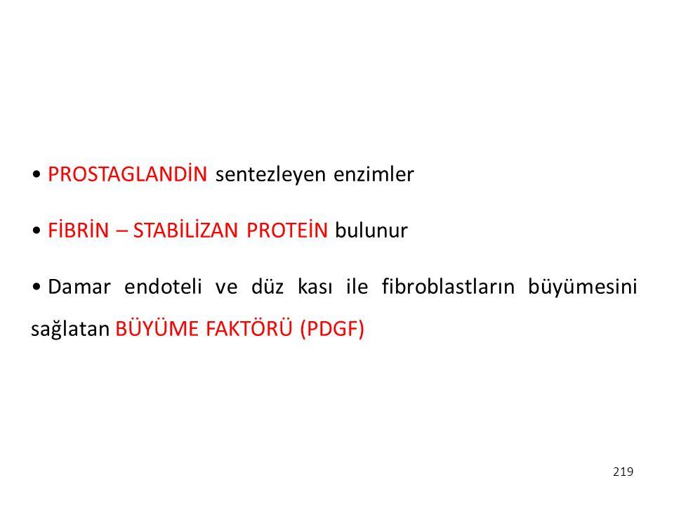 PROSTAGLANDİN sentezleyen enzimler