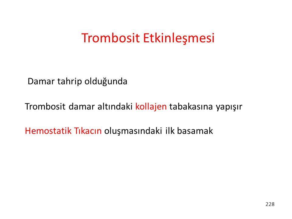 Trombosit Etkinleşmesi