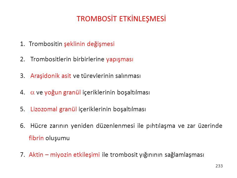 TROMBOSİT ETKİNLEŞMESİ