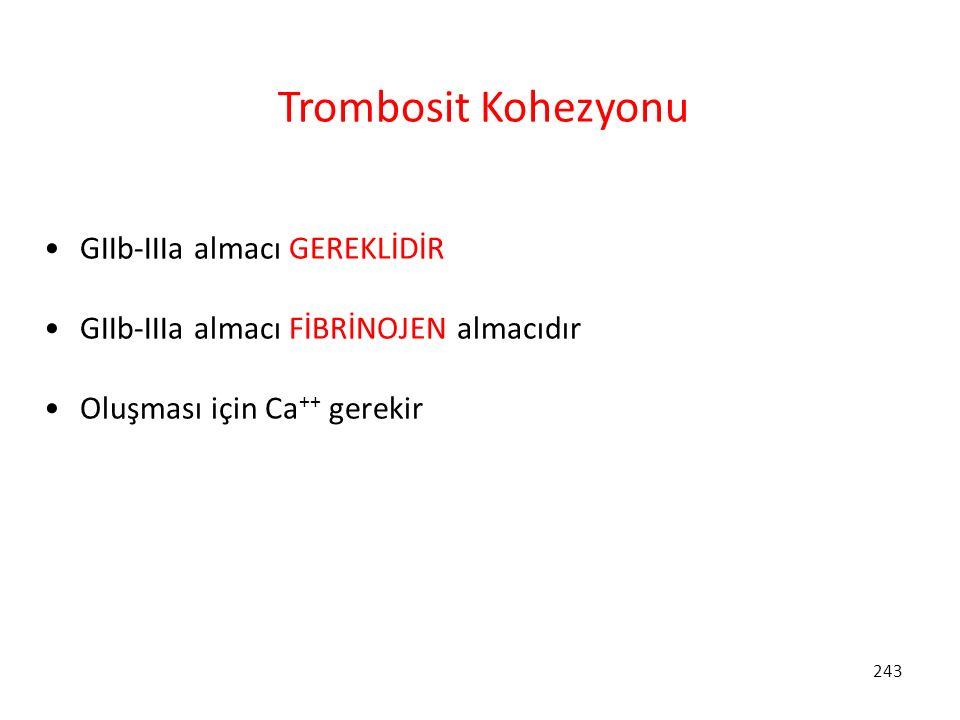 Trombosit Kohezyonu GIIb-IIIa almacı GEREKLİDİR