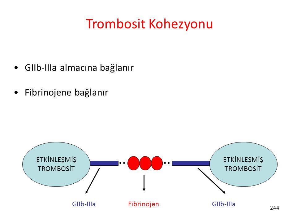 Trombosit Kohezyonu GIIb-IIIa almacına bağlanır Fibrinojene bağlanır