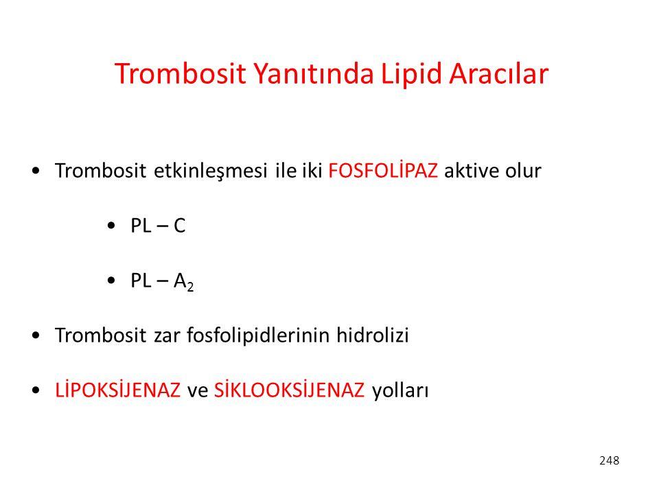 Trombosit Yanıtında Lipid Aracılar