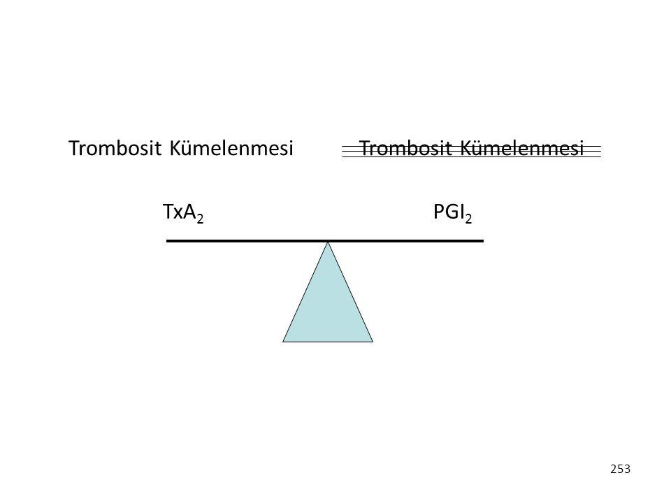 Trombosit Kümelenmesi