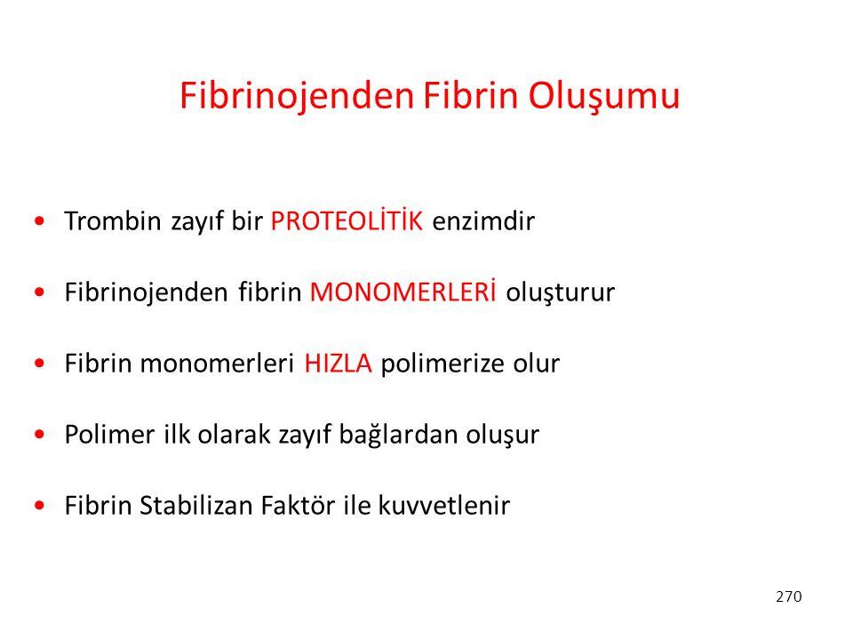 Fibrinojenden Fibrin Oluşumu