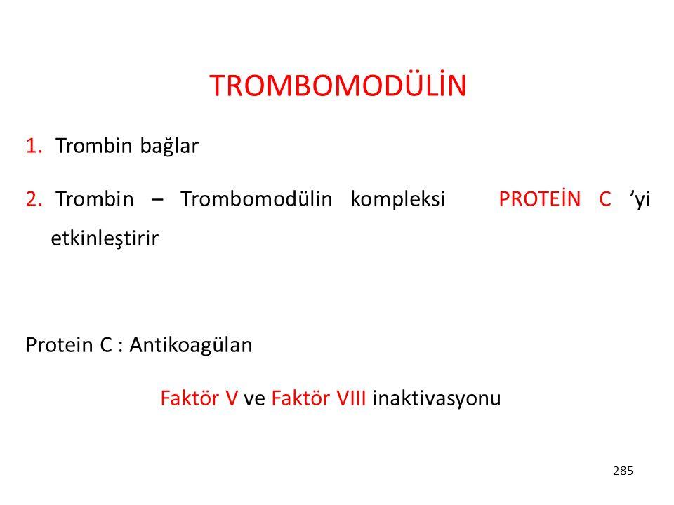 TROMBOMODÜLİN Trombin bağlar