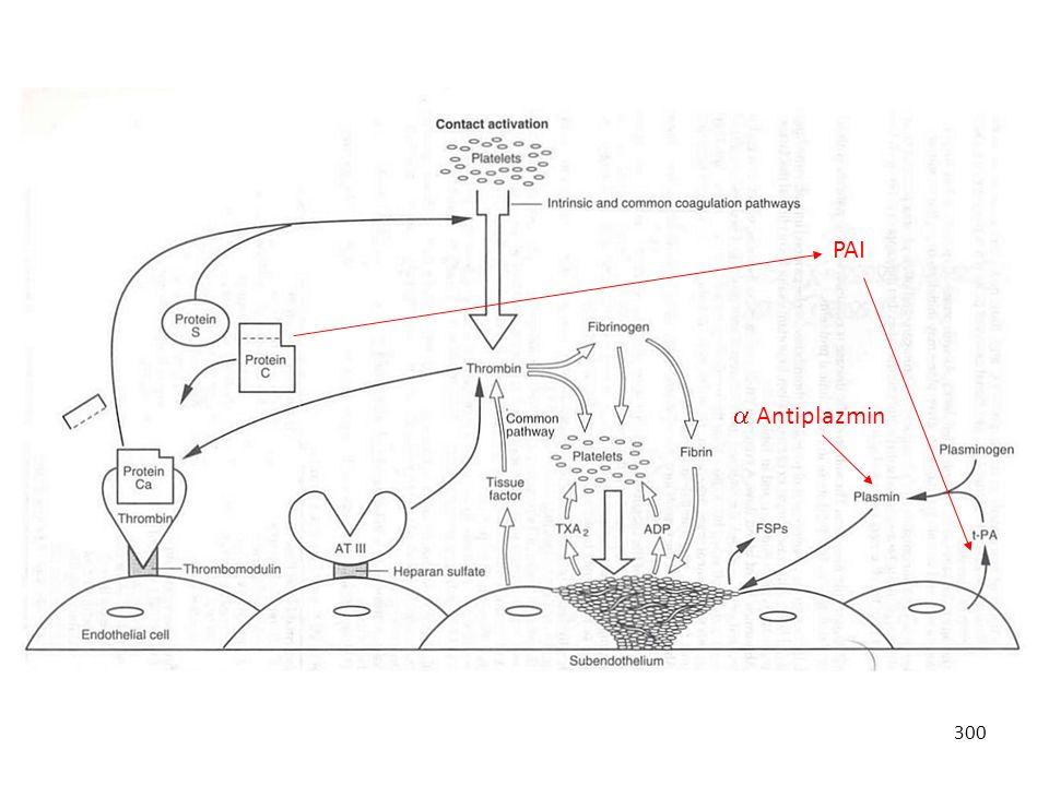PAI  Antiplazmin