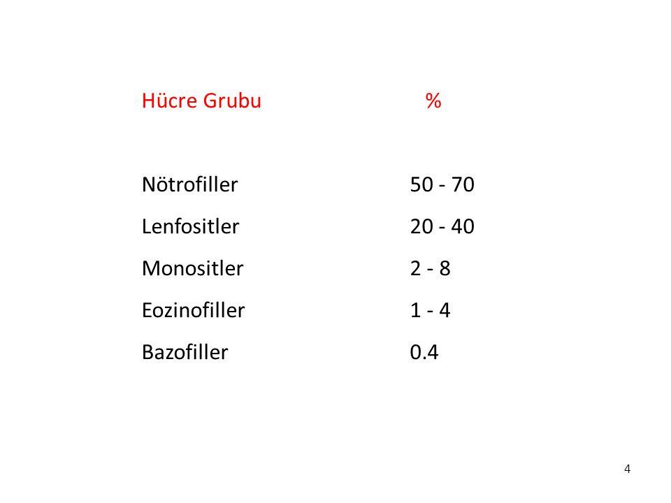 Hücre Grubu % Nötrofiller 50 - 70. Lenfositler 20 - 40. Monositler 2 - 8. Eozinofiller 1 - 4.