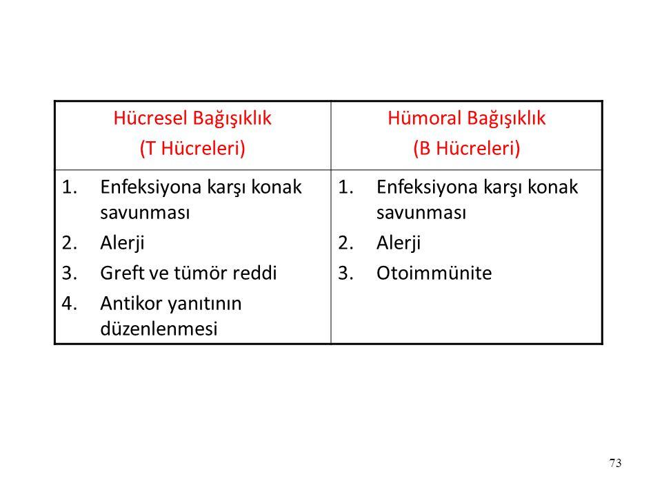 Hücresel Bağışıklık (T Hücreleri) Hümoral Bağışıklık. (B Hücreleri) Enfeksiyona karşı konak savunması.