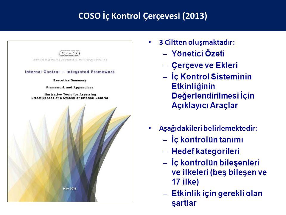 COSO İç Kontrol Çerçevesi (2013)