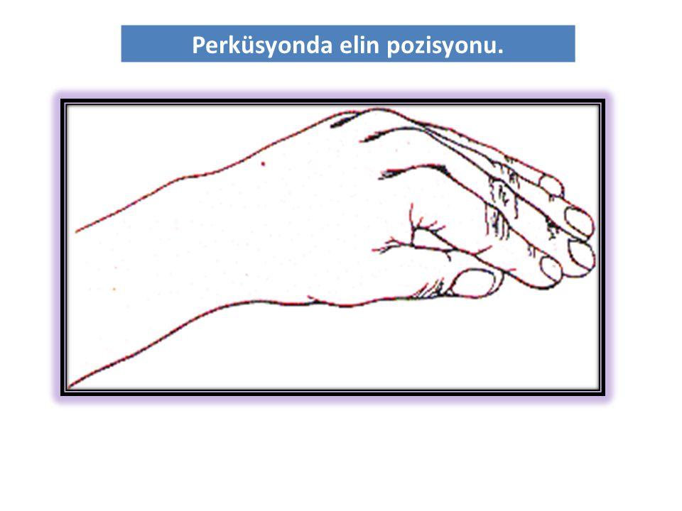 Perküsyonda elin pozisyonu.