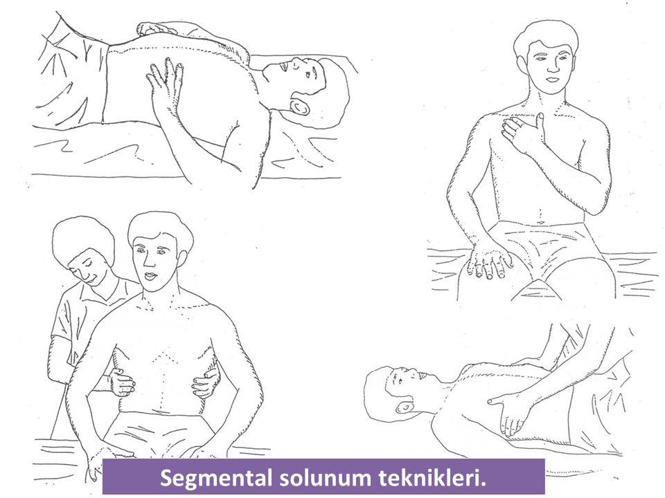 Segmental solunum teknikleri.
