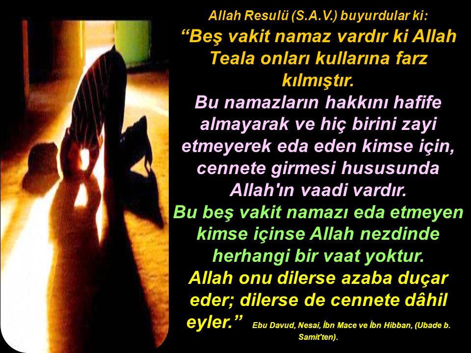 Allah Resulü (S.A.V.) buyurdular ki: