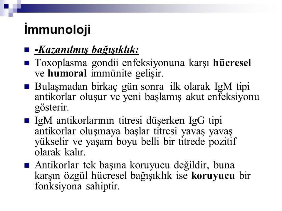 İmmunoloji -Kazanılmış bağışıklık: