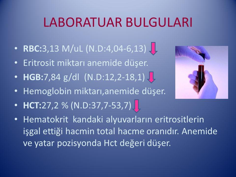 LABORATUAR BULGULARI RBC:3,13 M/uL (N.D:4,04-6,13)