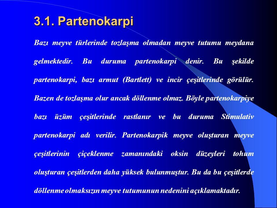 3.1. Partenokarpi