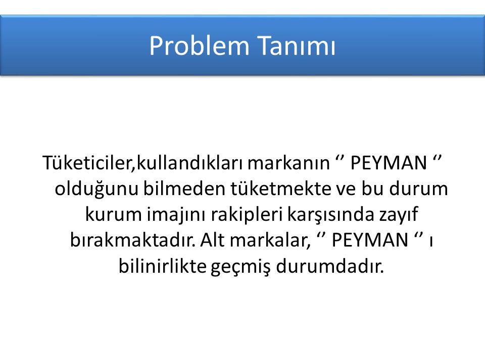 Problem Tanımı