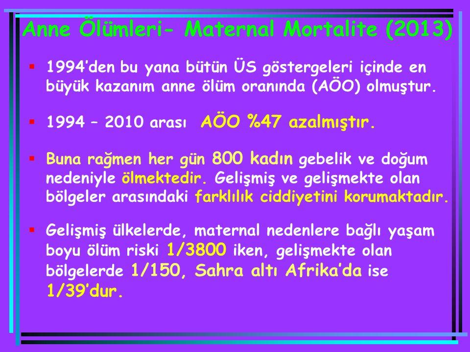 Anne Ölümleri- Maternal Mortalite (2013)
