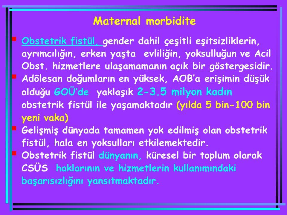 Maternal morbidite