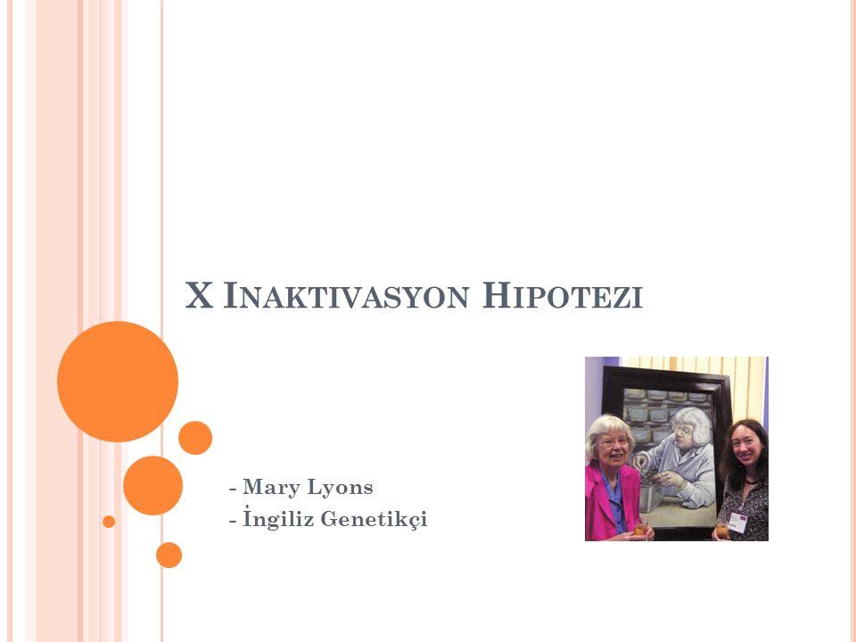 X Inaktivasyon Hipotezi
