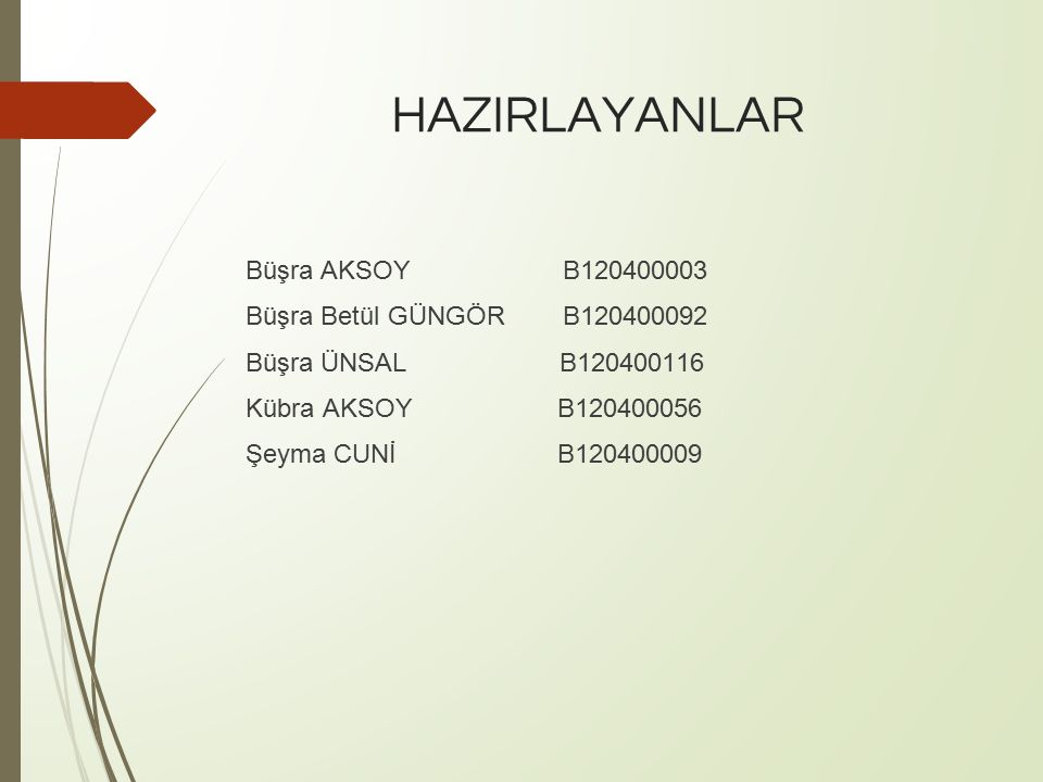 HAZIRLAYANLAR Büşra AKSOY B120400003 Büşra Betül GÜNGÖR B120400092